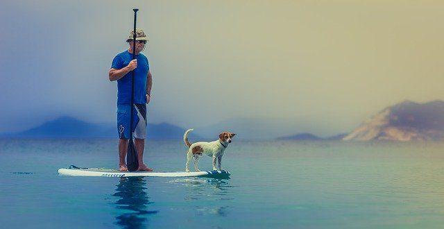 tabla de paddle surf hinchable con perro